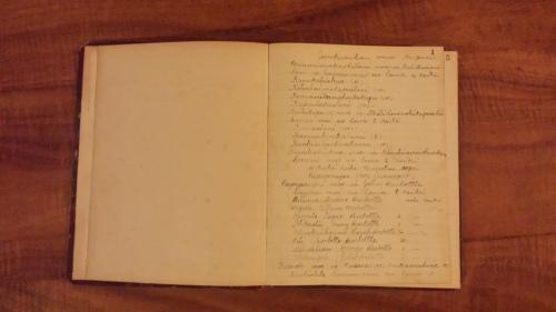 Mary P.Bannister Lucasʻs Handwritten Geneaology